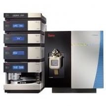 Thermo Scientific TSQ Endura Triple-Stage Quadrupole Mass Spectrometer